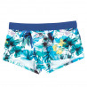 HOM Trunk Aquarelle Blue
